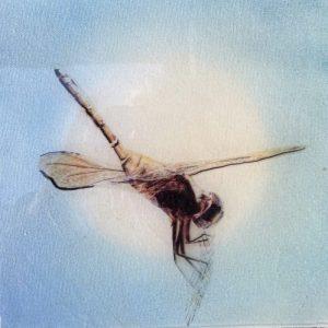 Epoxy resin on canvas